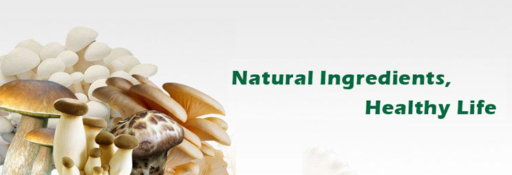 Naturalin Natural Ingredients Healthy Life first image